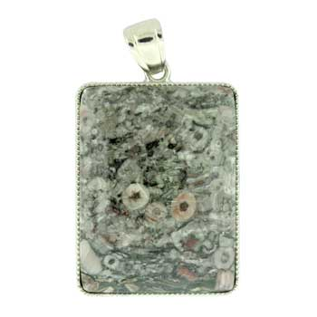 32X47mm Plain Rectangle Insect Fossil Jasper Jewelry